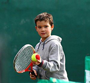 Havasu Springs Resort - Tennis Court